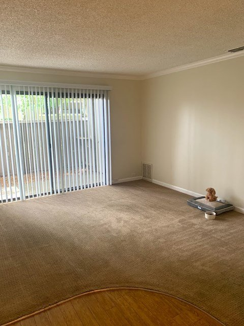 Waters Edge Apartment Interior Living Room