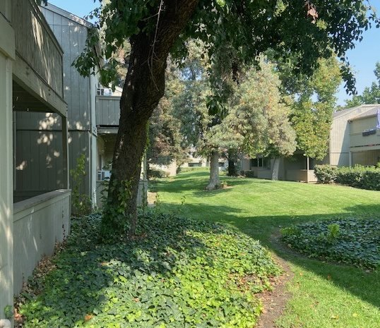 The Redwoods Apartments Exterior