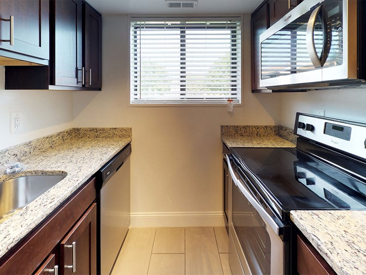 modern kitchen appliances and view to outdoor area at Rose Hill Apartments, Alexandria, VA