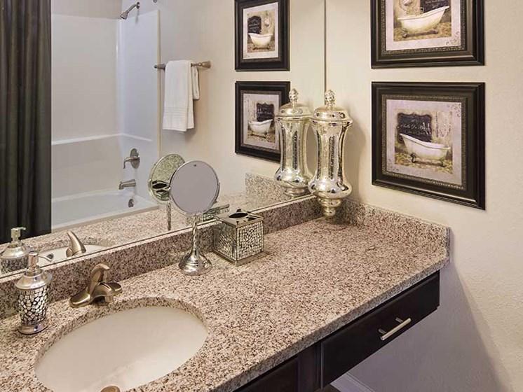 Executive Finish Bathrooms at Paces Ridge at Vinings, Atlanta, GA 30339