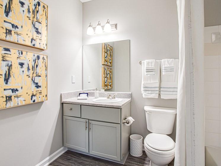 Brodick Hills 2 bedroom model bathroom vanity