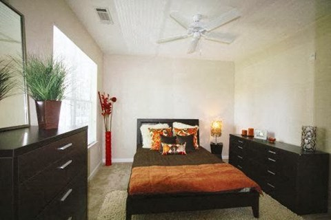 Edgewater Vista Apartments, Decatur Georgia, model apartment master bedroom
