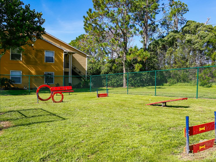 Bark Park For Your Four Legged Friend at The Adelaide, Florida, 32821