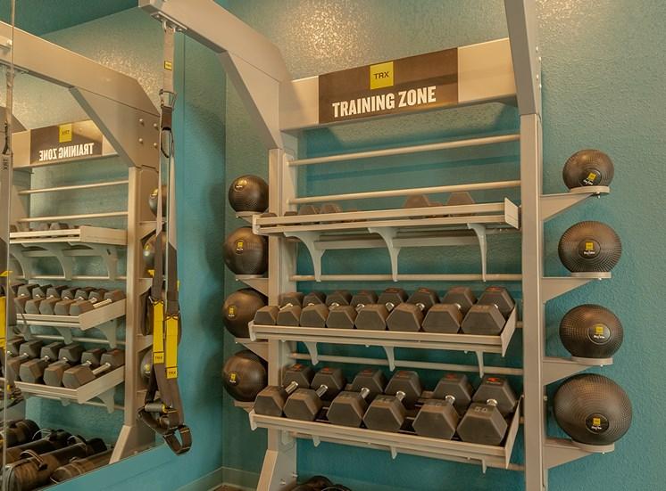 Fitness Center - Dumbbells