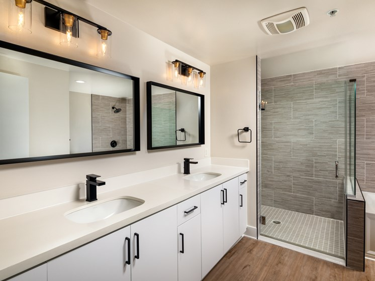 Primary Bath Counter and shower