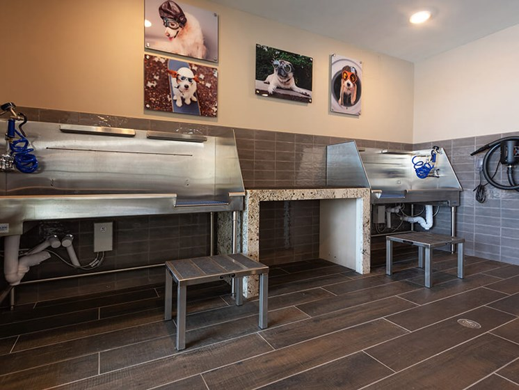 Keep your furry best friend looking their best with the Pet Spa at Encore Boulevard One Apartments, 7108 E Lowry Boulevard, CO