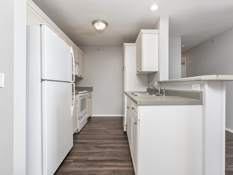 deluxe remodeled kitchen