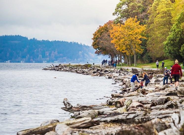 People Walking Along Rocky Shoreline