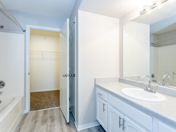Master bathroom with walk in closet and full bathtub and vanity