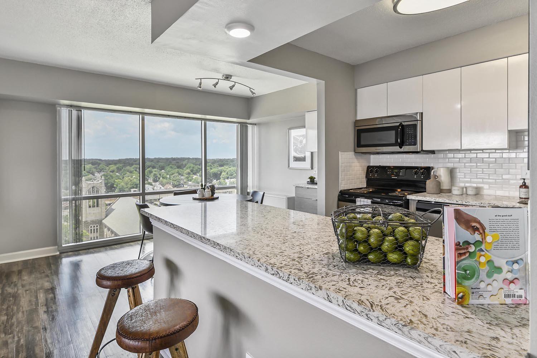 Designer Granite Countertops at CityView on Meridian, Indianapolis, IN,46208