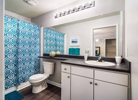 Spacious Bathrooms at Haven at Patterson Place, Durham, NC