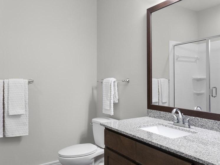 Brizo Bathroom with Glass Standup shower