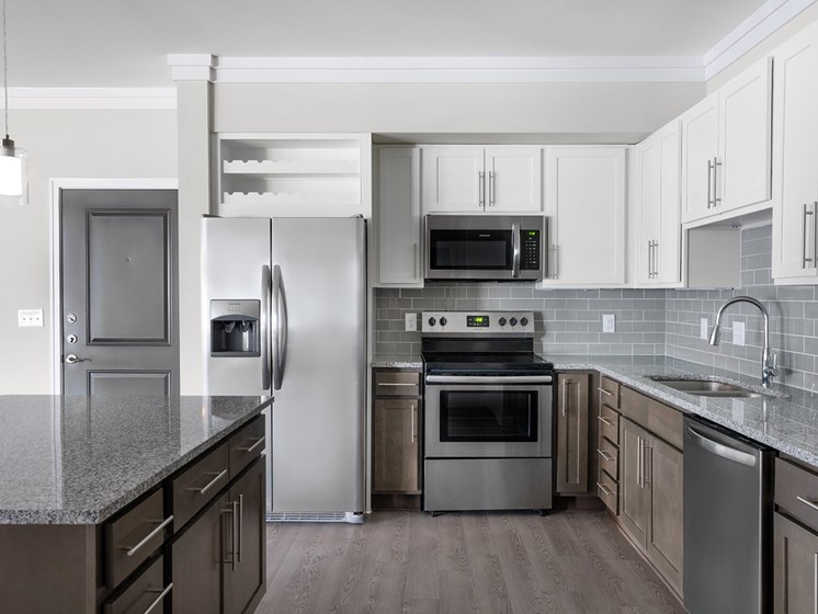 Brizo Kitchen with Stainless Steel Appliances
