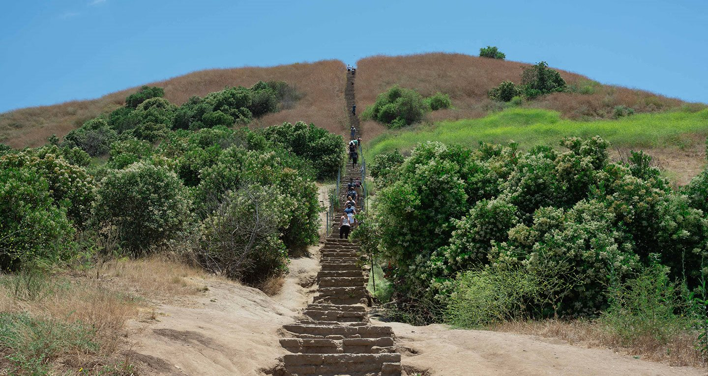 Culver City Stairs at the Baldwin Hills Overlook