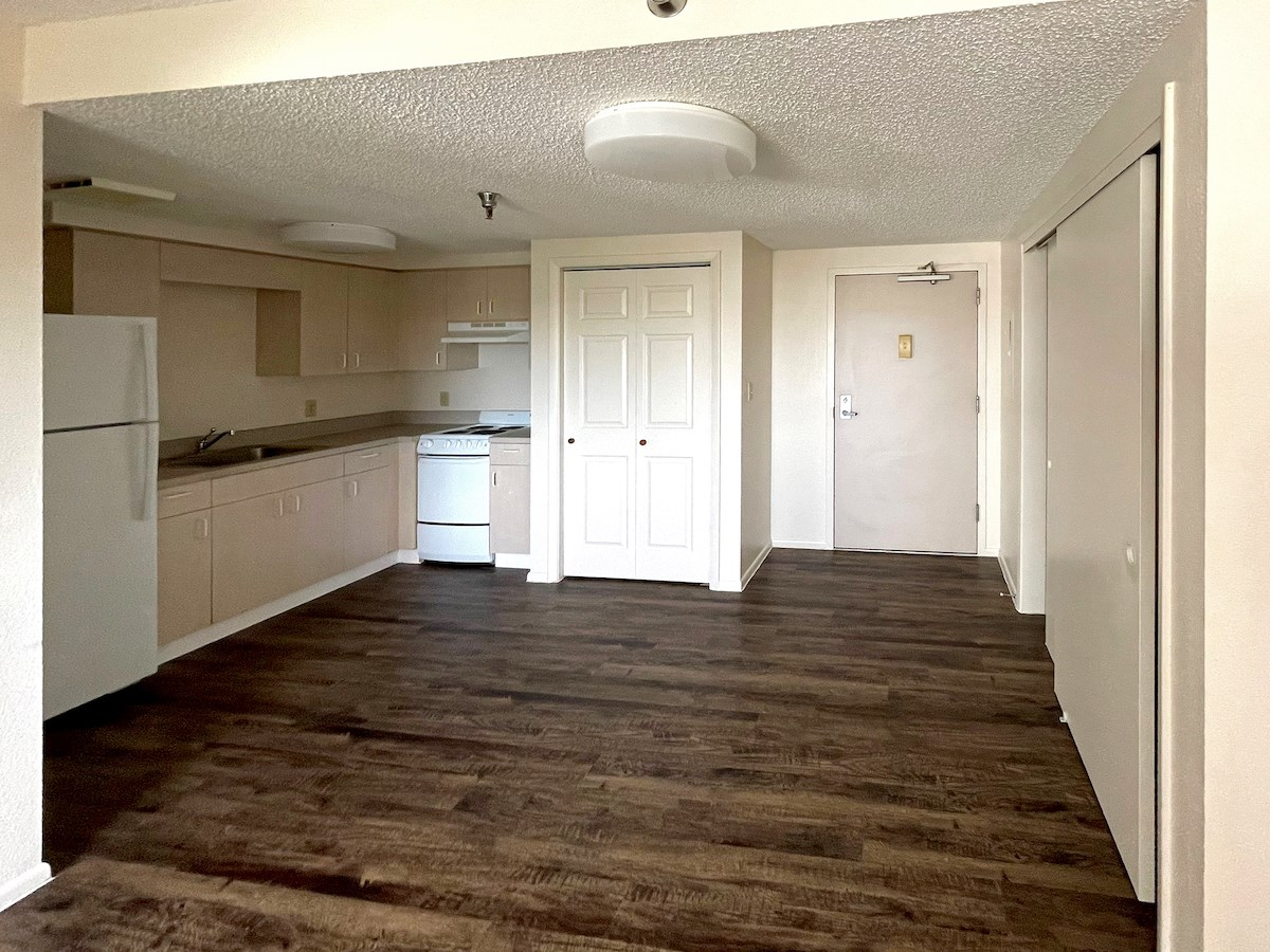 kitchen and entrance area with hardwood-style flooring