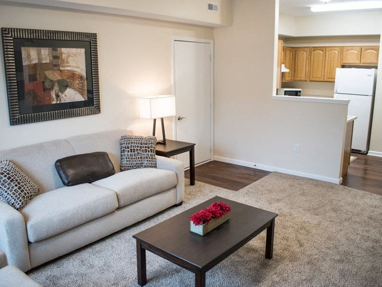 Akron-oh-apartment-rentals-redwood-the-village-of-northhampton-living-room