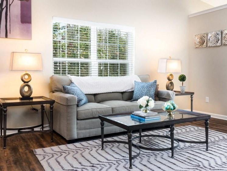 Lake Wylie SC Apartment Rentals Redwood Lakepointe Ridge Living Room