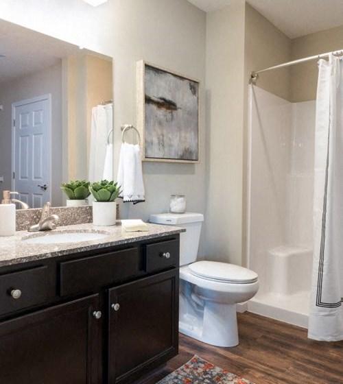 Concord NC Apartment Rentals Redwood Bathroom