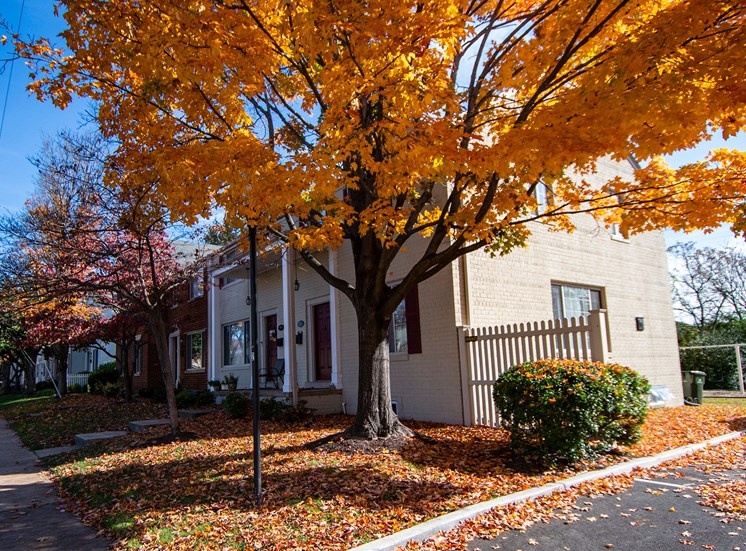 Brookville Townhomes Fall Colors Photo