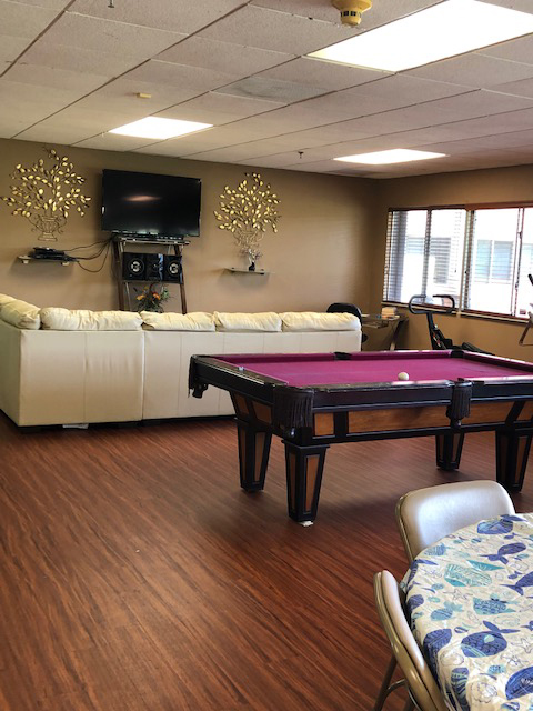 couch, tv, and pool table in community room at Deedco Gardens Senior Apartments
