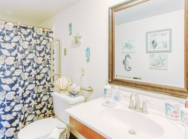 bathroom with tub/shower, toilet, sink and vanity and decor