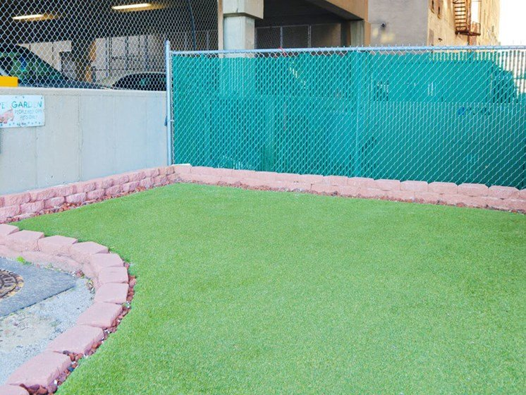 dog park at Commodore Perry Apartments