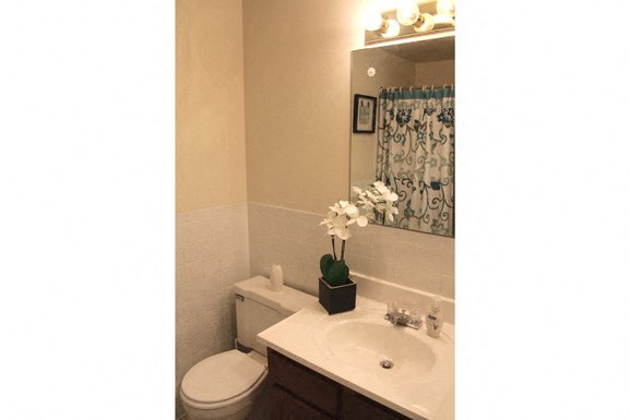 Peppertree Village in Amherst NY - Full Bathroom