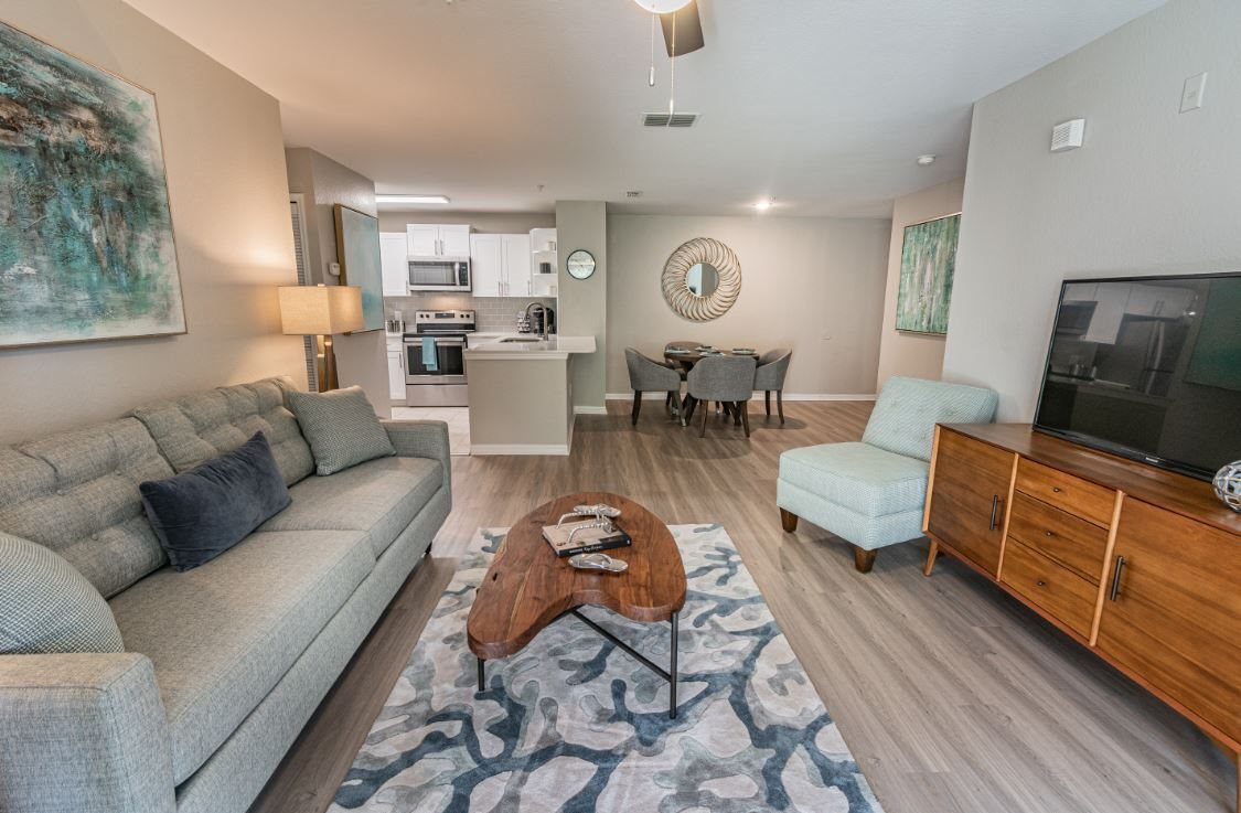 Modern Living Room at The Boot Ranch Apartments, Palm Harbor, FL, 34685
