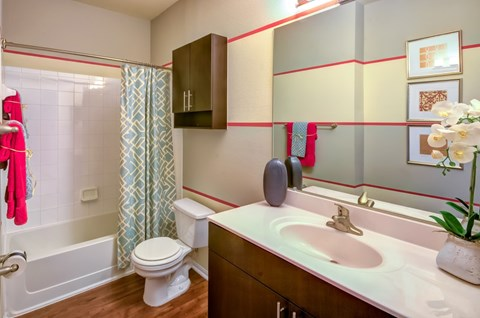bathroom: sink, toilet, shower/bathtub