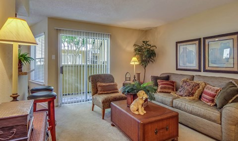 Full Carpet Living Room    Southwest Houston Apartments For Rent   Southpoint Apartments