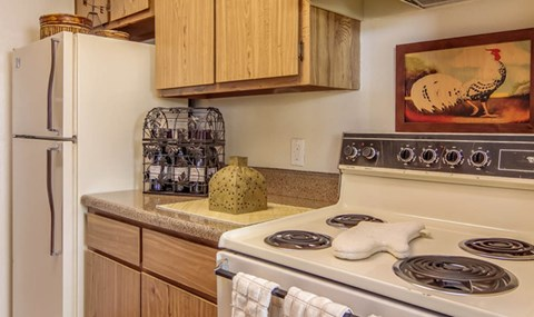 White appliance package and light cabinets are available in select units  Southeast Apartments For Rent   Southpoint Apartments
