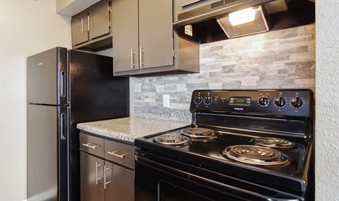 Dark cabinets and full black appliance packages are available in select units   Southeast Apartments For Rent   Southpoint Apartments