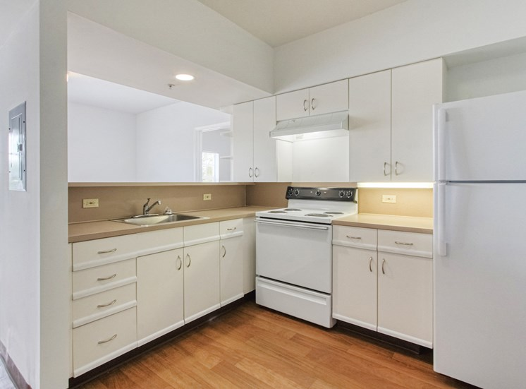 efficient kitchen with ample cabinetry