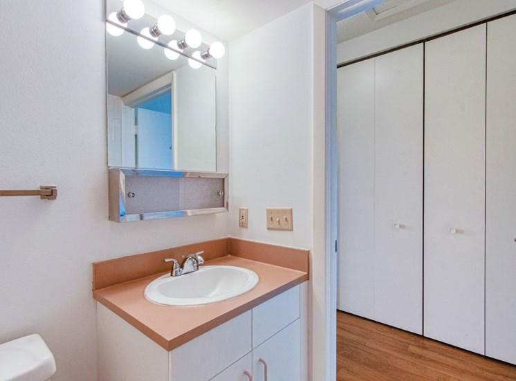 bathroom with sink, mirror, and lighting above sink