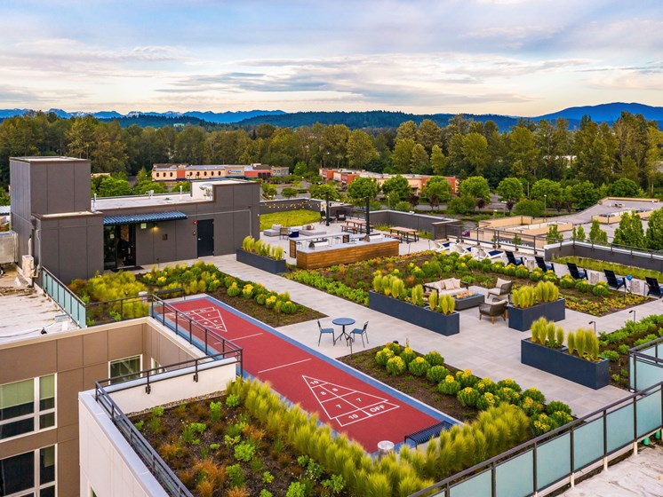 Rooftop with Shuffleboard & Firepit