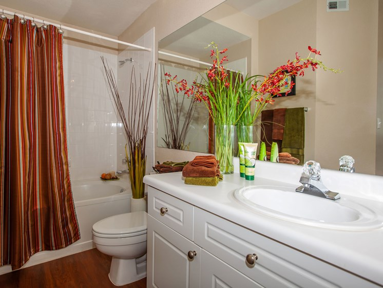 bathroom with sink toilet and shower