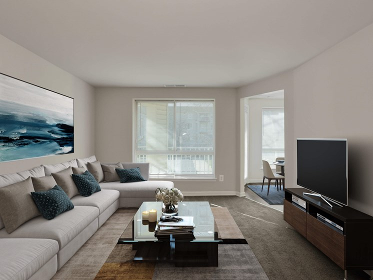 Living room with couch and television