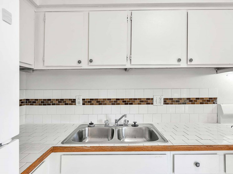State Of The Art Kitchen Sink at Rivershell Apartments, Michigan, 48911