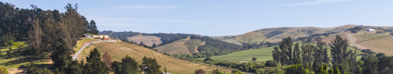 Photo of Santa Rosa Hills