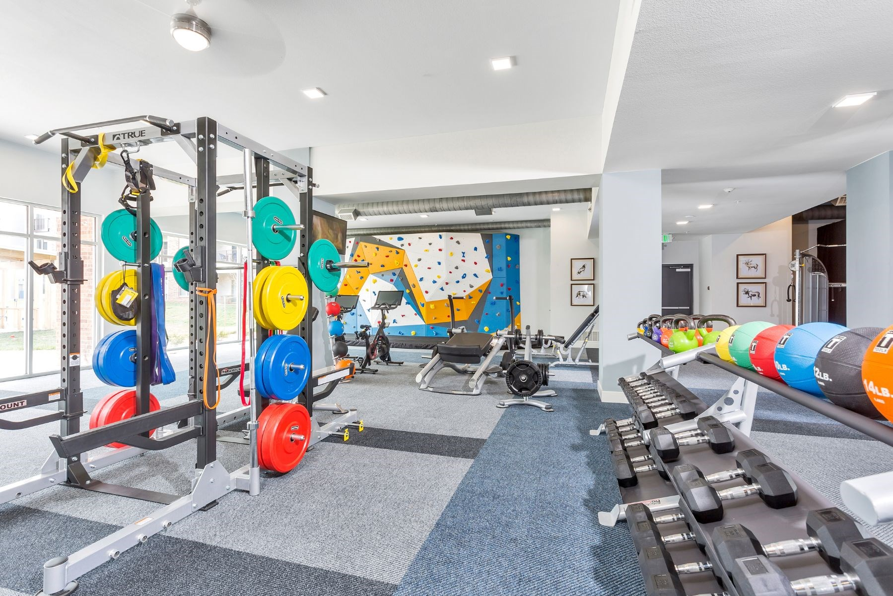 Westwood Green Apartments Fitness Center Weight Room