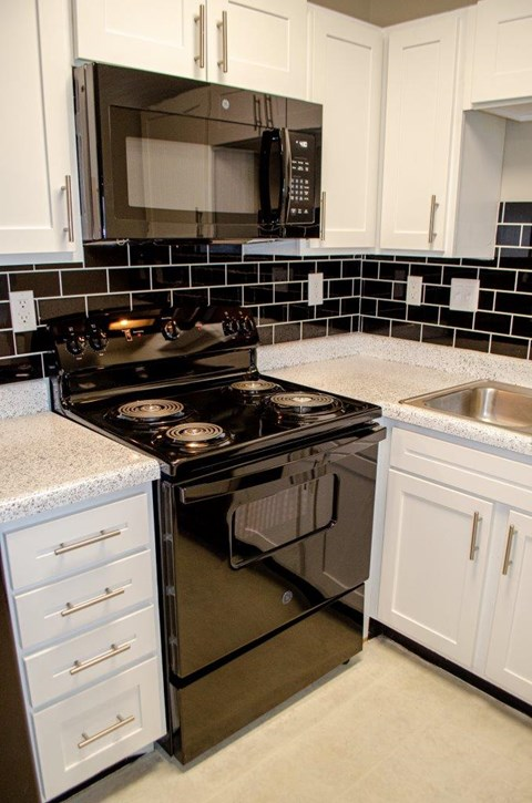 apartments for rent greensboro nc newly renovated pet friendly