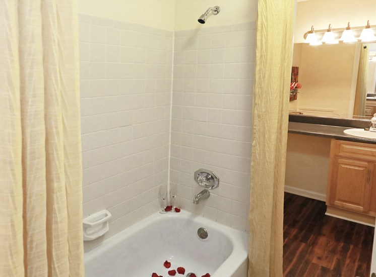 spacious bathroom with tub and shower