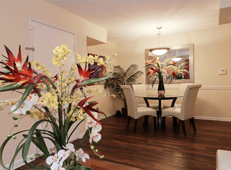 beautiful plant in Crestwood Green at 701 Apartments living room