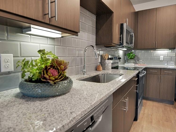 altair-tech-ridge-luxury-apartments-kithcen-4