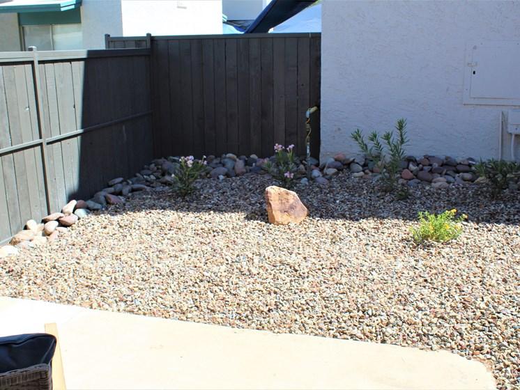 backyard at apartment in Tucson