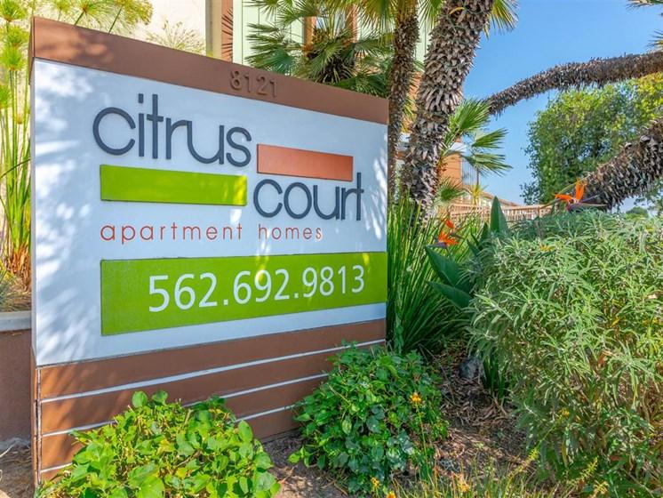 signage of citrus court