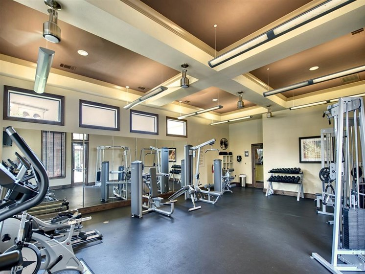 Fitness Center With Modern Equipment at Palm Valley Apartments, Texas