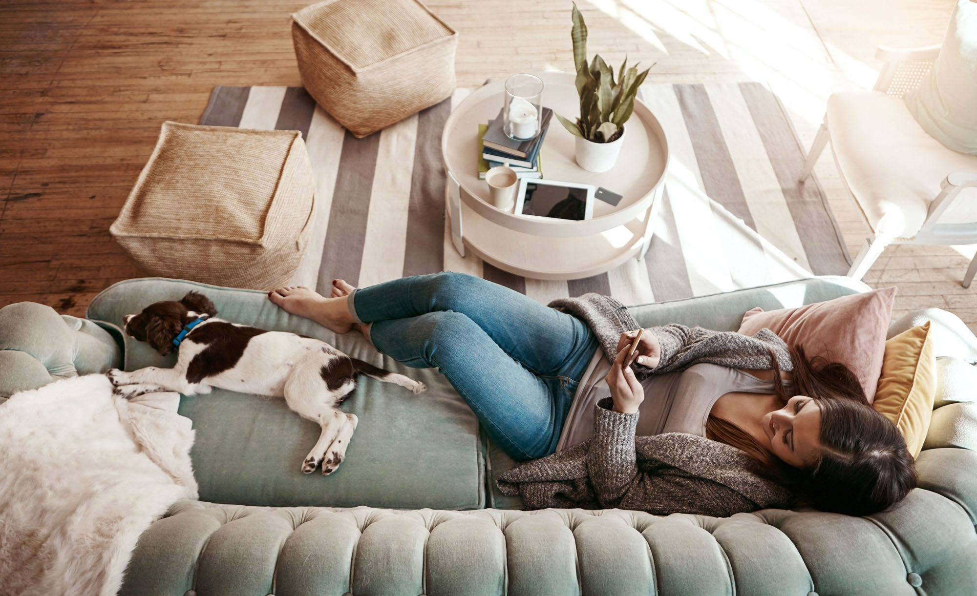 stock image- woman on couch with pet