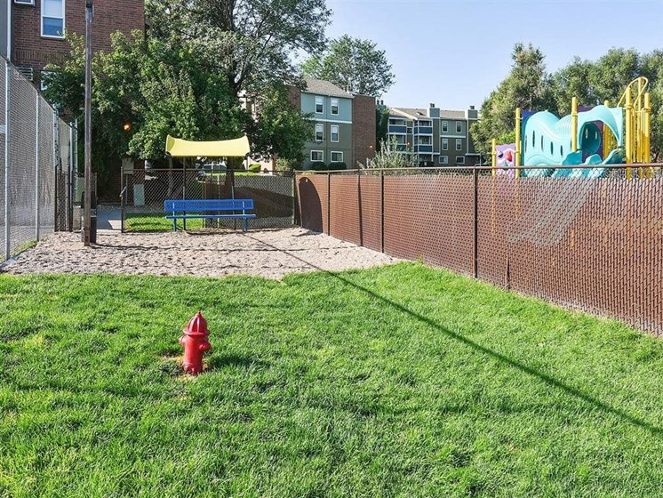 The Modern | Denver, CO Apartments | Dog Park