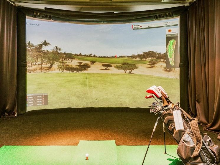 Virtual Golf simulator